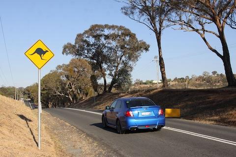 Terugblik Bathurst kangoeroe