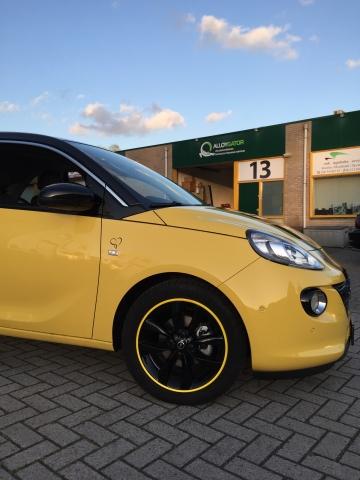 AlloyGator Opel