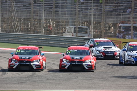 Four-way fight - tcr