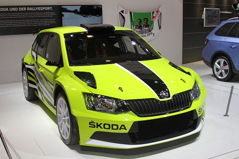 2016 Skoda Rallye