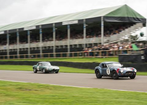 Goodwood Revival Autosport BVDW-325