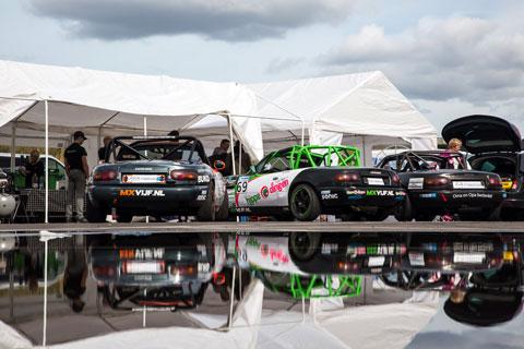 plassen-in-paddock-2510