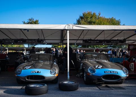 Goodwood Revival Autosport Bob-9