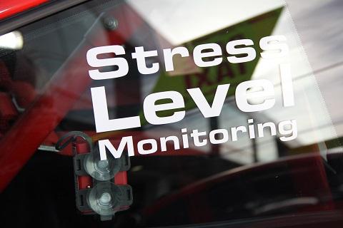 2019 Stress Level
